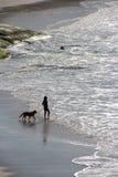 Homme et nature Photographie stock libre de droits