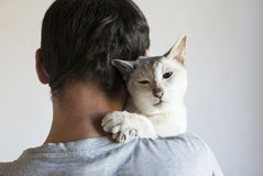 Homme et son chat Images stock