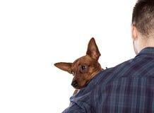 Homme et un chien Images stock