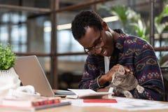 Homme faisant ses tâches avec un chat dans des ses mains images stock