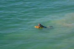 Homme flottant sur un conseil de boogie photo stock