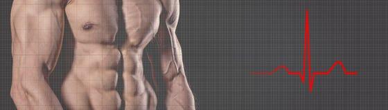 Homme fort sportif Homme de forme physique d'électrocardiogramme de battement de coeur Fi Images libres de droits