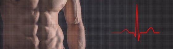 Homme fort sportif Homme de forme physique d'électrocardiogramme de battement de coeur Fi Photos libres de droits