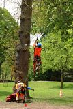 Homme grimpant ? un arbre pour travailler ? lui en Allemagne photos libres de droits