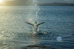 Homme heureux se baignant en mer et éclaboussant l'eau au soleil, le concept de la relaxation photographie stock libre de droits