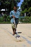 Homme indonésien pendant le riz de séchage Images libres de droits