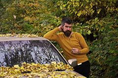 Homme intense Homme dans la forêt d'automne photographie stock libre de droits