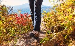 Homme marchant au bord d'une falaise Images libres de droits