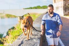 Homme marchant avec son crabot Image libre de droits