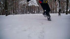 Homme marchant dans la neige profonde dans la forêt d'hiver au jour de Milou Mouvement lent banque de vidéos