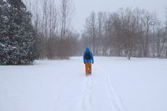 Homme marchant en parc de ville pendant la tempête de neige lourde, Toronto, Ontario, Canada image libre de droits