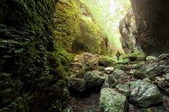 Homme marchant en vallée de montagne avec des roches Photos stock