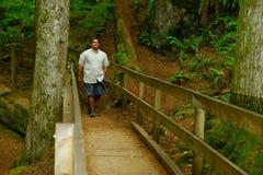 Homme marchant le long de la traînée scénique Photographie stock