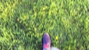 Homme marchant sur l'herbe banque de vidéos