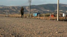 Homme marchant sur la route rocheuse banque de vidéos