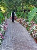 Homme marchant sur le chemin image stock