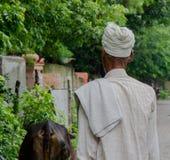 Homme marchant sur son dos, habillé dans le blanc à côté d'une vache en Inde photographie stock