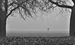 Homme marchant vers le brouillard Photos libres de droits