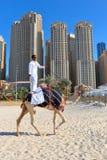 Homme montant un chameau sur la plage Photo libre de droits