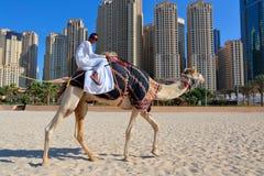 Homme montant un chameau sur la plage Images stock