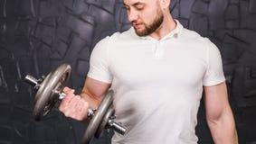 Homme musculaire établissant dans le gymnase faisant des exercices avec des haltères aux biceps, ABS nu masculin fort de torse Image stock