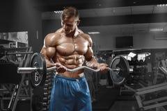 Homme musculaire établissant dans le gymnase faisant des exercices avec le barbell au biceps, ABS nu masculin fort de torse Photos stock