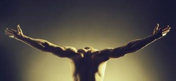 Homme musculaire avec le corps sexy photo libre de droits
