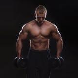 Homme musculaire bel établissant avec des haltères Photo stock