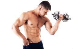 Homme musculaire puissant photographie stock libre de droits