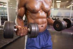 Homme musculaire s'exerçant avec des haltères dans le gymnase Photographie stock libre de droits