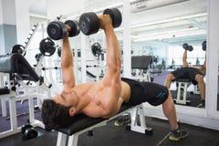 Homme musculaire s'exerçant avec des haltères dans le gymnase Image stock