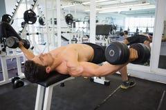 Homme musculaire s'exerçant avec des haltères dans le gymnase Photo stock