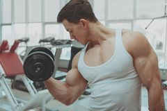 Homme musculaire ?tablissant au gymnase image stock