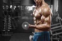 Homme musculaire établissant dans le gymnase faisant des exercices avec des haltères aux biceps, ABS nu masculin fort de torse Photo libre de droits