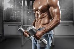 Homme musculaire établissant dans le gymnase faisant des exercices avec le barbell, ABS nu masculin fort de torse Photo libre de droits