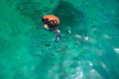Homme naviguant au schnorchel avec des poissons Image stock