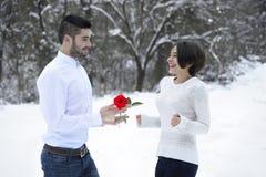 Homme offrant une rose à son amie Photos libres de droits