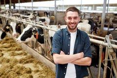 Homme ou agriculteur avec des vaches dans l'étable à l'exploitation laitière Photos libres de droits