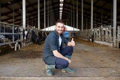Homme ou agriculteur avec des vaches dans l'étable à l'exploitation laitière Photo stock