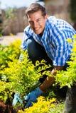 Homme plantant l'arbuste Photographie stock libre de droits