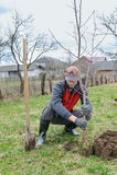 Homme plantant un arbre Images libres de droits