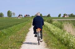Homme plus âgé de recyclage sur la campagne néerlandaise avec la digue Photos libres de droits