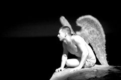 Homme portant Angel Wings photos stock