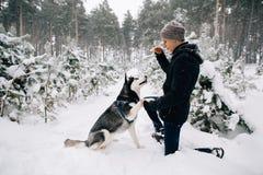 Homme pour former le chien enroué dans la forêt neigeuse d'hiver photographie stock
