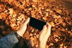 Homme prenant la photo des feuilles d'automne avec le smartphone Photographie stock libre de droits