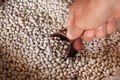 Homme prenant un scoop des haricots secs photographie stock libre de droits
