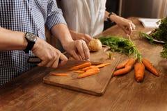 Homme progressif brillant préparant le repas végétarien Image libre de droits