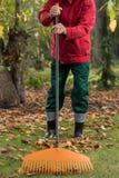 Homme ratissant les feuilles Photo stock