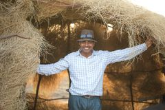 Homme rural photos libres de droits
