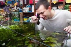 Homme sélectionnant les poissons tropicaux Images libres de droits